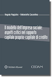 9788813362386 Il modello dell'impresa sociale aspetti critici nel rapporto capitale proprio-capitale di credito