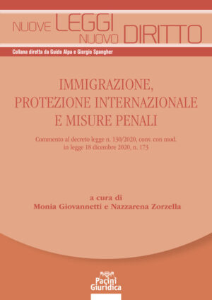 9788833793061 Immigrazione protezione internazionale e misure penali